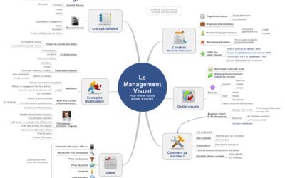 Article Bilan : Management Visuel